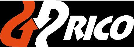 Autocares Rico. Viajes. Retina Logo